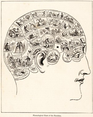 Phrenology diagram. From People's Cyclopedia of Universal Knowledge (1883).