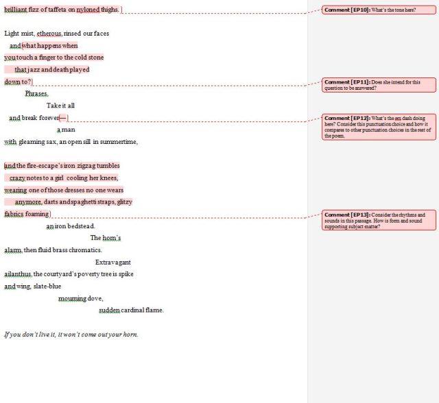 Ornithology Poetry Analysis Exercise screenshot - 3